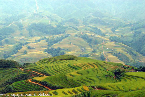 Sapa Budget Tours with Hotel stay